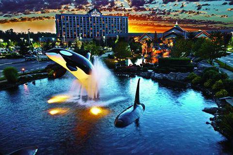 Tulalip Resort Hotel